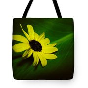 Shine Your Light Tote Bag