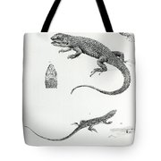 Shingled Iguana Tote Bag