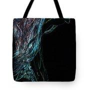Shining Lady Tote Bag by Jenny Rainbow