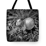 Shiny Mushroom Tote Bag