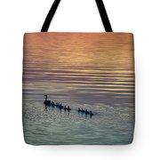 Shipshewana Lake Evening Tote Bag