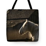 Shire Horse Tote Bag