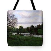 Shobrooke Park  Crediton  Devon Tote Bag