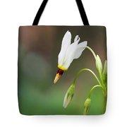 Shooting Star Wildflower Tote Bag