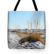 Shore And Ice Tote Bag