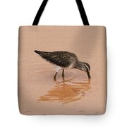 Shore Bird At Whitewater Draw Tote Bag