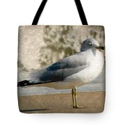 Shore Bird Tote Bag