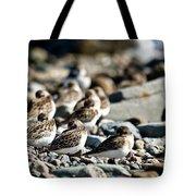 Shorebird Rest Time Tote Bag