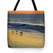 Shorebirds At Dawn Tote Bag