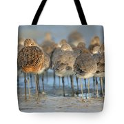 Shorebirds At Flamingo Bay Tote Bag
