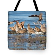 Shorebirds Flocking At Bodega Bay Tote Bag