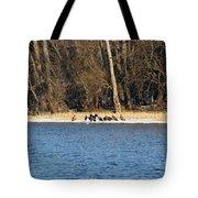 Shoreline Meeting Tote Bag