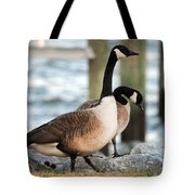 Shoreline Stroll Tote Bag