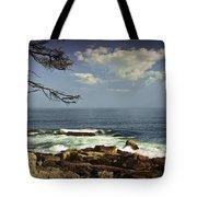 Shoreline View In Acadia National Park Tote Bag