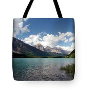 Shores Of Mistaya Tote Bag