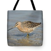 Short-billed Dowitcher, Breeding Tote Bag