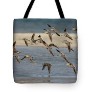 Short-billed Dowitchers Flying Tote Bag