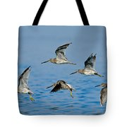 Short-billed Dowitchers In Flight Tote Bag