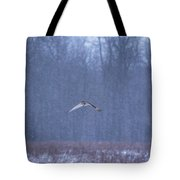 Short Eared Owl In Motion Tote Bag