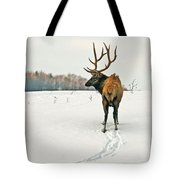 Shortest Distance Elk Tote Bag