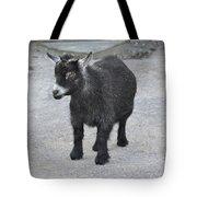 Shorty Tote Bag