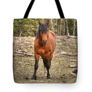 Show Down At Sun Down Tote Bag