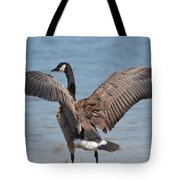 Show Of Feathers Tote Bag