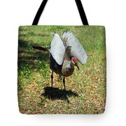 Show Off Tote Bag by Aimee L Maher Photography and Art Visit ALMGallerydotcom
