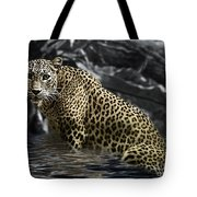 Shower Time Tote Bag