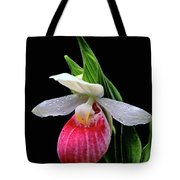 Showy Lady's Slipper Tote Bag