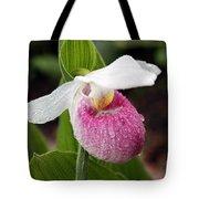 Showy Lady's Slipper Tote Bag