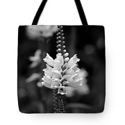 Obedient Plant In Black And White Tote Bag