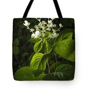 Shrub With White Blossoms Tote Bag