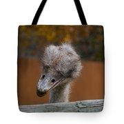 Shy Bird Tote Bag