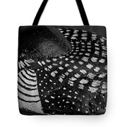 Shy Loon - Painted Rock - Seabird - One Of A Kind Tote Bag