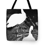 Shy Swans Tote Bag