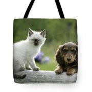 Siamese Kitten And Dachshund Puppy Tote Bag
