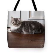 Siberian Forest Cat Tote Bag