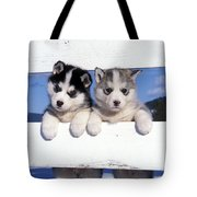 Siberian Husky Puppies Tote Bag