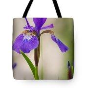 Siberian Iris Blossom Tote Bag