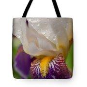 Siberian Iris I Tote Bag