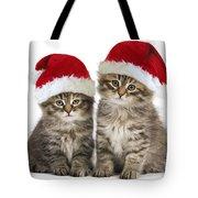 Siberian Kittens In Hats Tote Bag