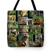 Siberian Tiger Collage Tote Bag