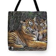 Siberian Tiger Cubs Endangered Species Wildlife Rescue Tote Bag