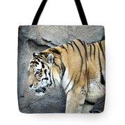 Siberian Tiger Panthera Tigris Altaica Usa Tote Bag