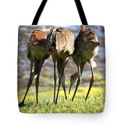 Sibling Rivalry 2 Tote Bag