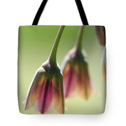 Sicilian Honey Garlic Tote Bag