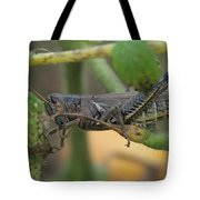 Side Of Big Brown Grasshopper Tote Bag
