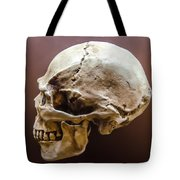 Side Profile View Of Human Skull   Tote Bag