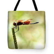 Side View Of A Calico Pennant Tote Bag